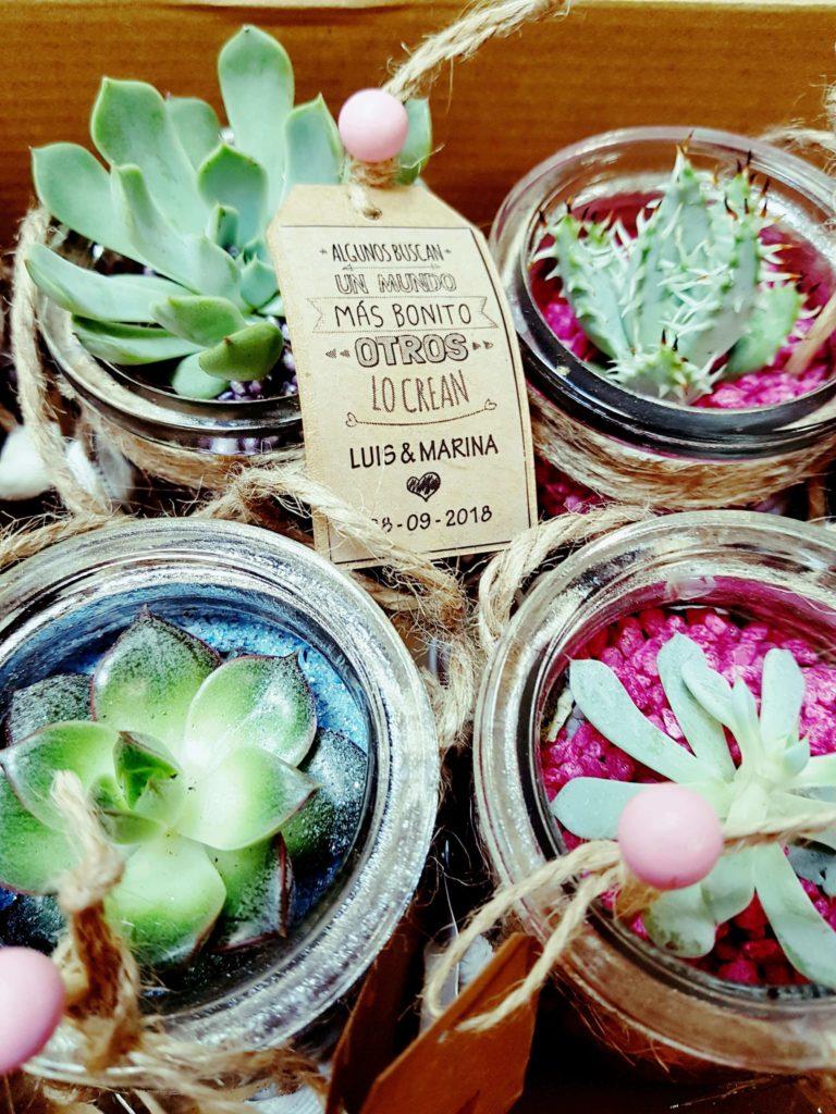 La Pergola Floristeria Almoradi Plantas para regalar 20180924_200801